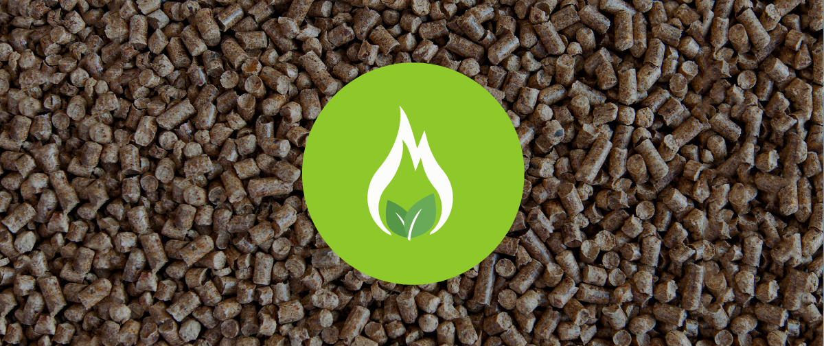 What is a Biomass Boiler?