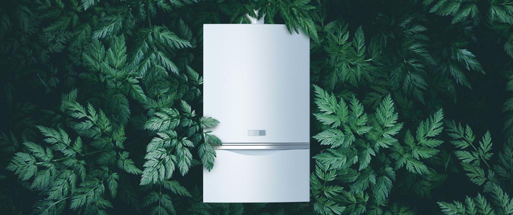 Green Boiler