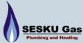 SESKU Gas