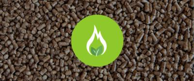 Biomass Boilers: Advantages and Disadvantages